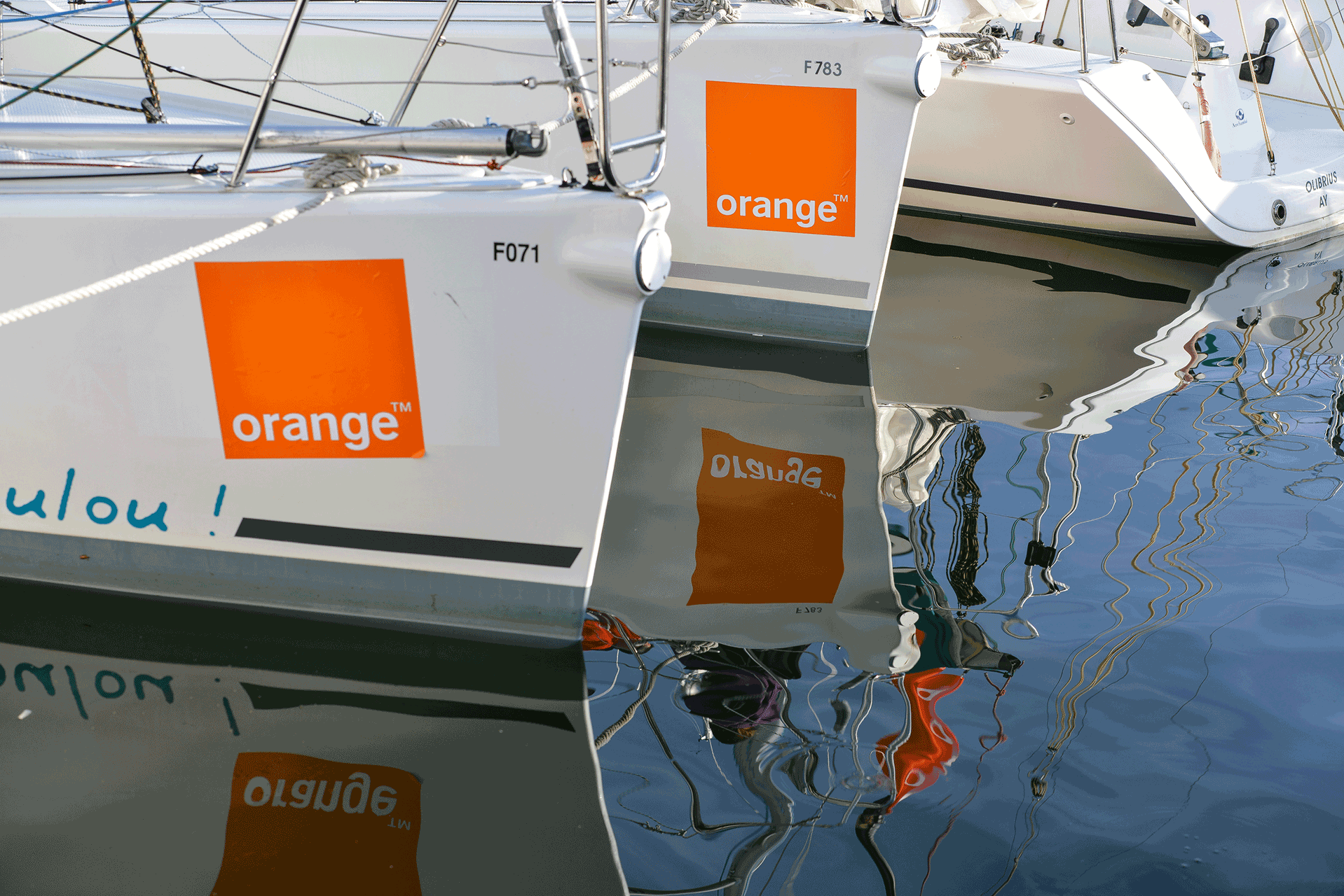 armor-cup-orange-photo-corporate-val-de-marne