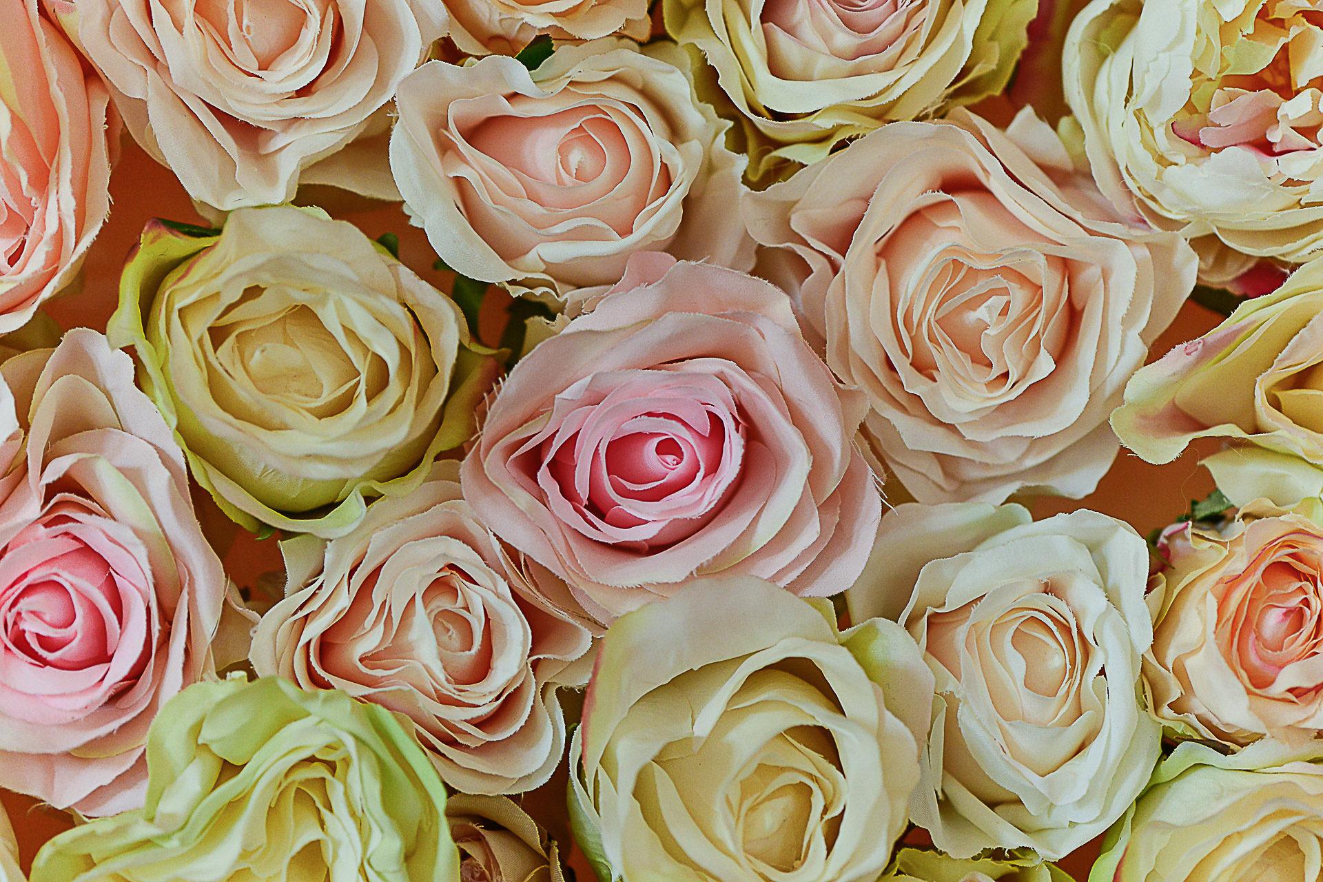 photographe-mariage-ile-de-france-roses-decoration-plan-de-tables